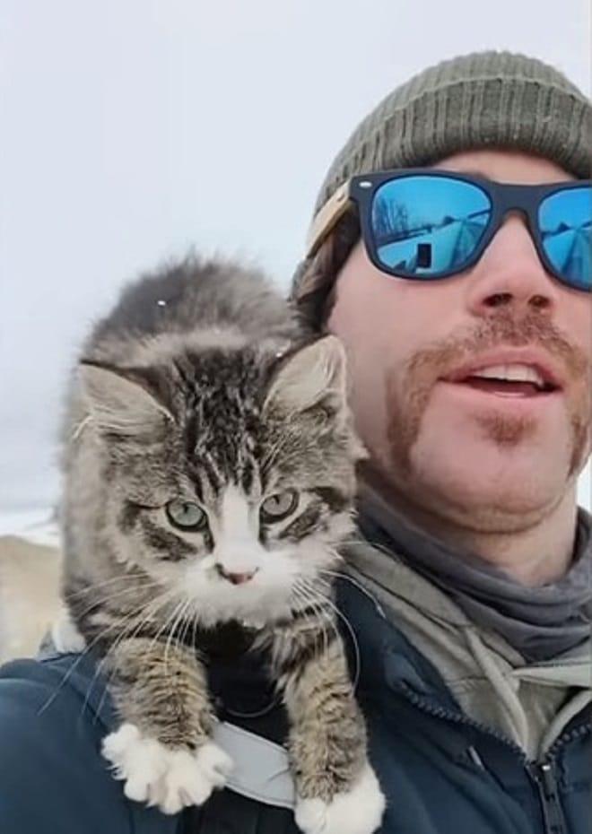 Котенок и человек