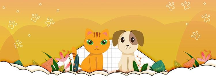cat, dog, dog, pet supplies