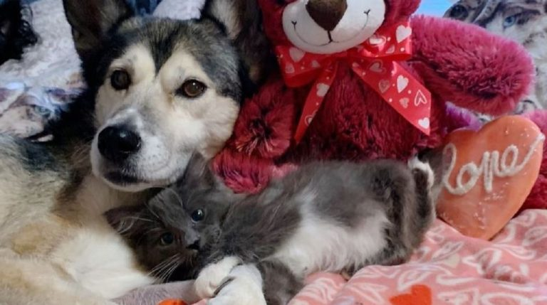 lovely friends