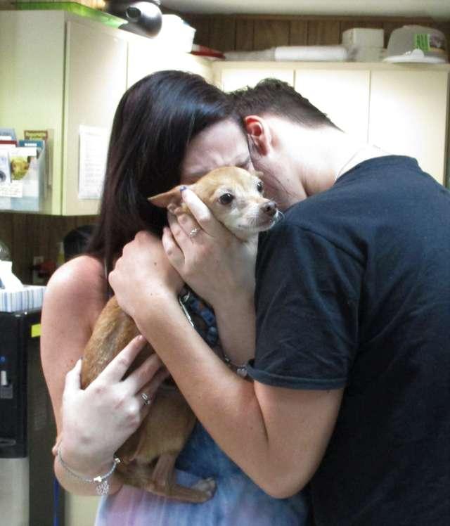 люди с собакой