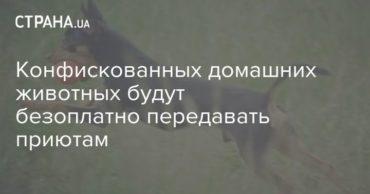 185581_62136.jpg