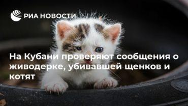 186614_7310.jpg