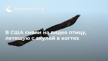 191380_33084.jpg