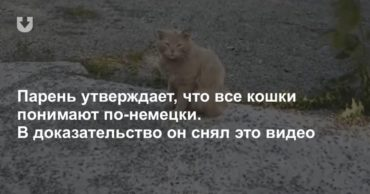 195795_78782.jpg