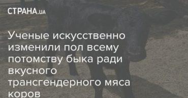 196523_15031.jpg