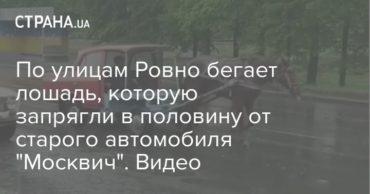 196591_57536.jpg