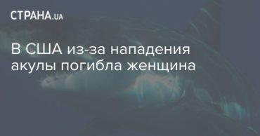 196615_97670.jpg