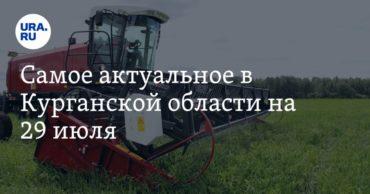 196811_59680.jpg