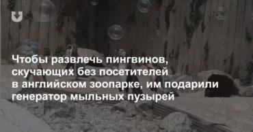 197075_34353.jpg