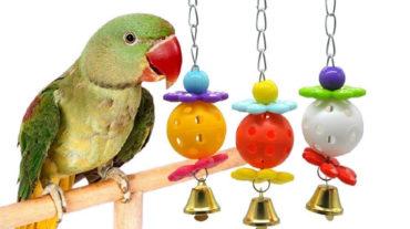 зоотовары для птиц