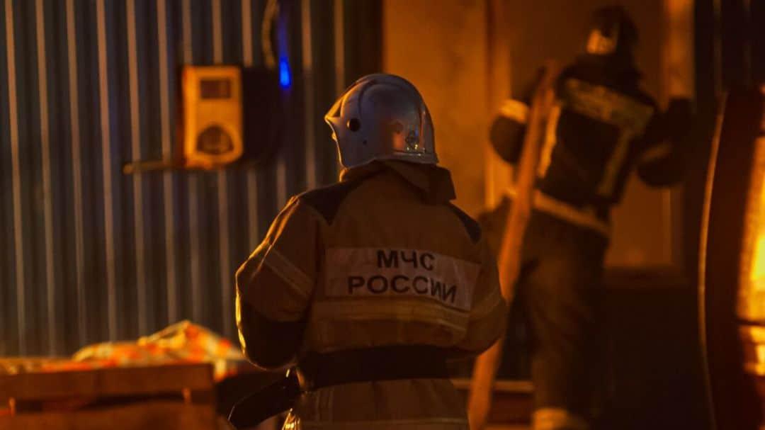 Пожарные нашли 26 мертвых собак в одной из петербургских квартир