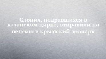 235704_78628.jpg