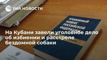 250985_33981.jpg