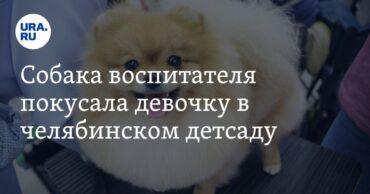 251396_29857.jpg