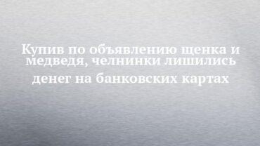 252699_79335.jpg