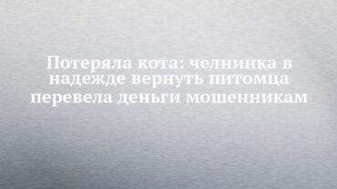 255502_93790.jpg