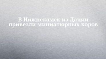 256275_7209.jpg