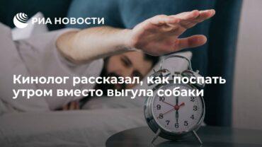 256449_65022.jpg