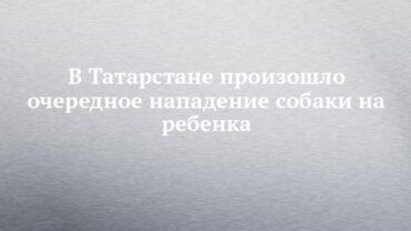 256537_71556.jpg