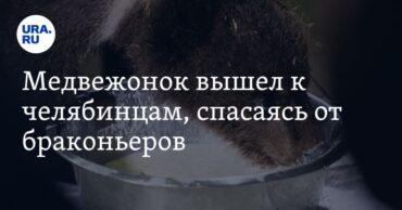 256798_26217.jpg