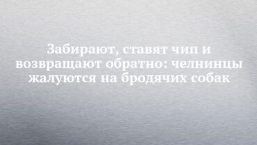 257796_98037.jpg
